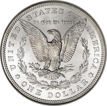 1884 Morgan Dollar Reverse