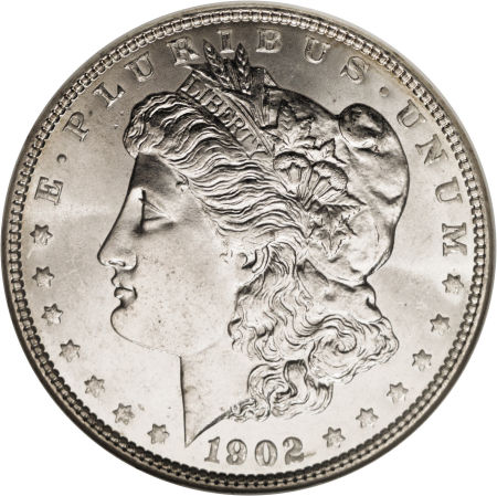 1902 Morgan Dollar obverse