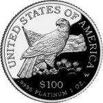 2003-Platinum-Eagle-Rev