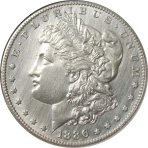 Clean lines on Morgan Dollar