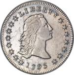 Counterfeit Flowing Hair Dollar