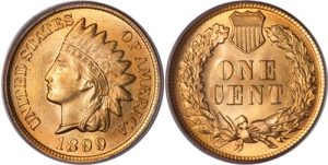 1899 Indian Head Cent Penny Value